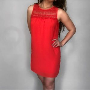 BCX Formal Dress